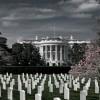 Мифы об американской армии
