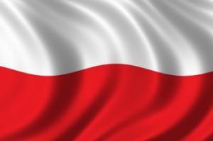 Польша готова к войне с Сирией