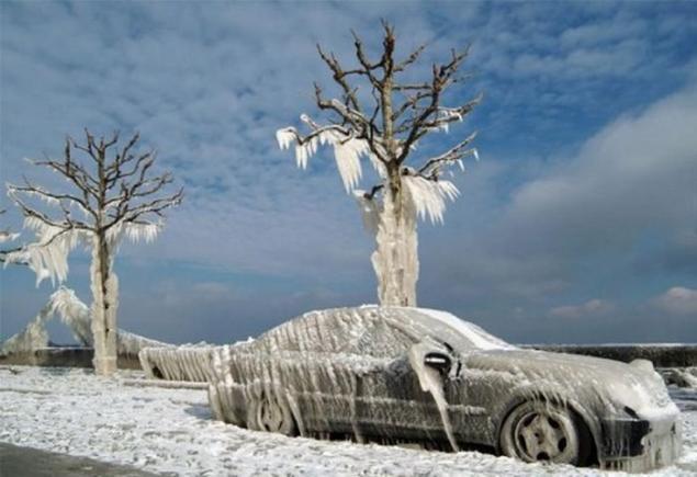 Зимний шторм: советы по выживанию