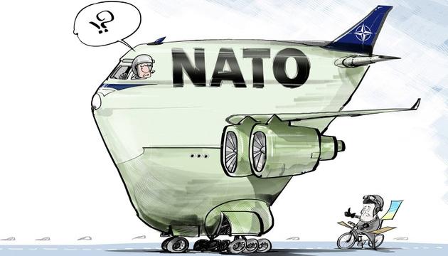 Возьмут ли Украину в НАТО?